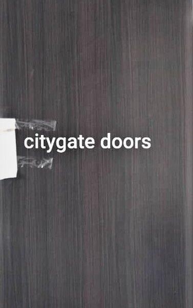 israeli wooden door - citygate doors